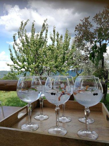 Джин  производства винодела Росси