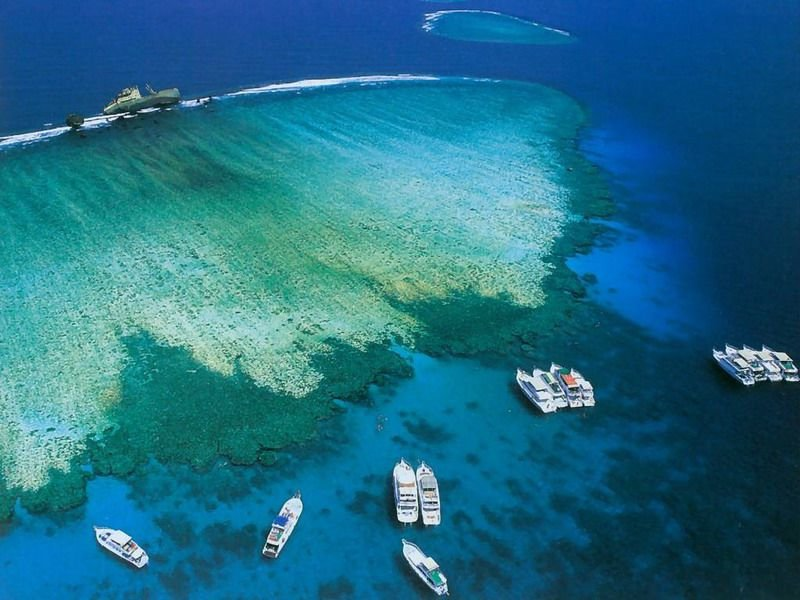 Экскурсия Остров Тиран на яхте В Шарм эль шейхе
