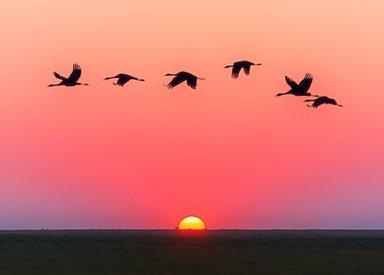 Sunset In plainland of Nepal