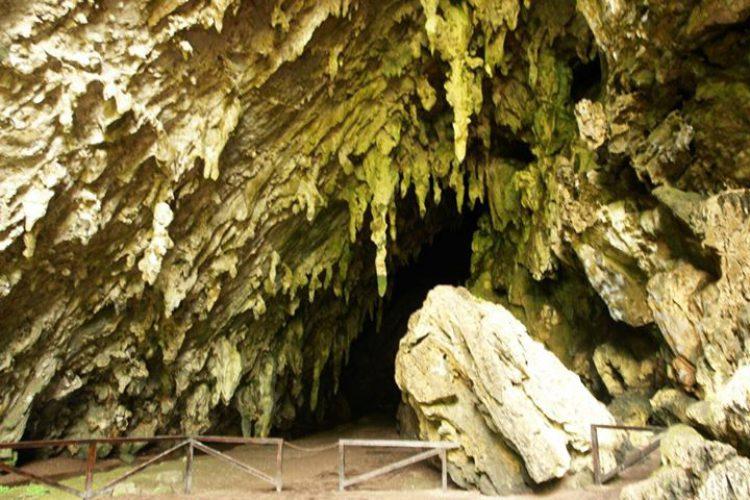 Достопримечательности Венесуэлы - Пещера Эль-Гуачаро (национальный парк Эль-Гуачаро)