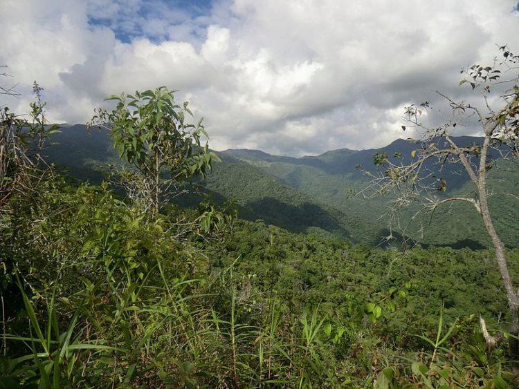 Дпстопримечательности Венесуэлы - Карибские Анды
