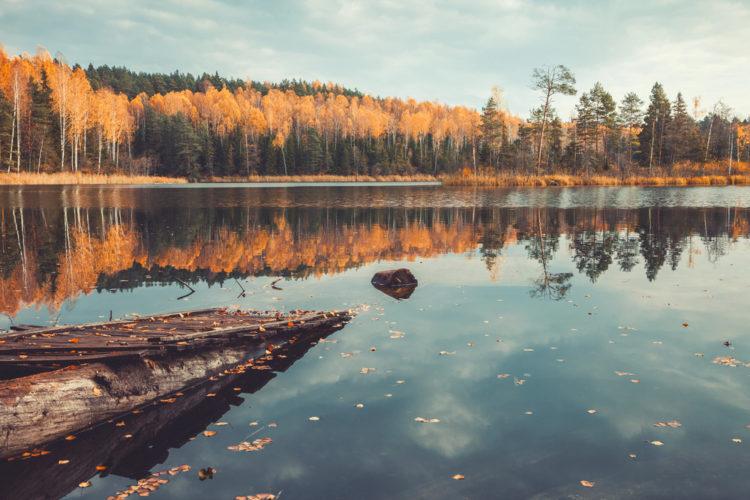 Достопримечательности Белоруссии - Нарочанский национальный парк