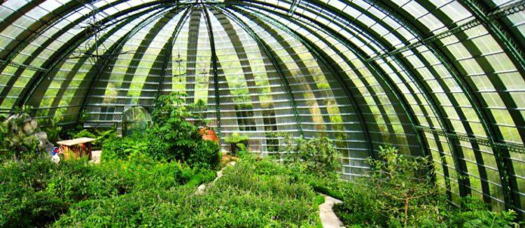 Что посмотреть в Коста-Рике - Ферма бабочек