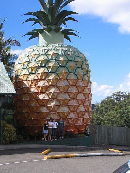 Достопримечательности Австралии - Большой ананас в Квинсленде