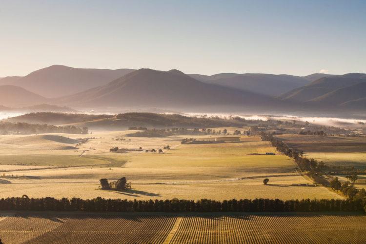 Достопримечательности Австралии - Долина реки Ярра