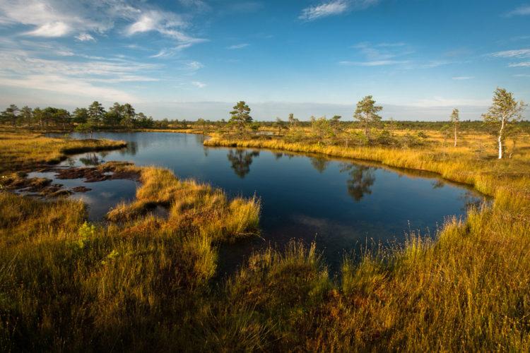 Достопримечательности Эстонии - Национальный парк Соомаа