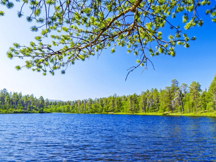 Достопримечательности Финляндии - Национальный парк Лемменйоки