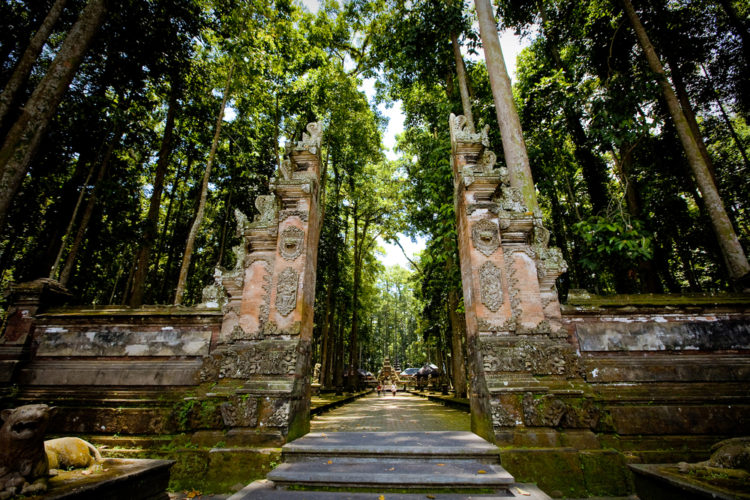Достопримечательности Индонезии - Лес обезьян в Убуде
