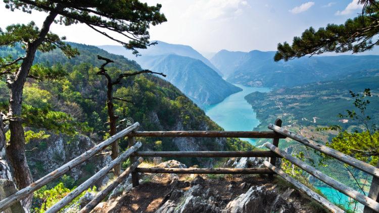 Достопримечательности Сербии - Национальный парк Тара