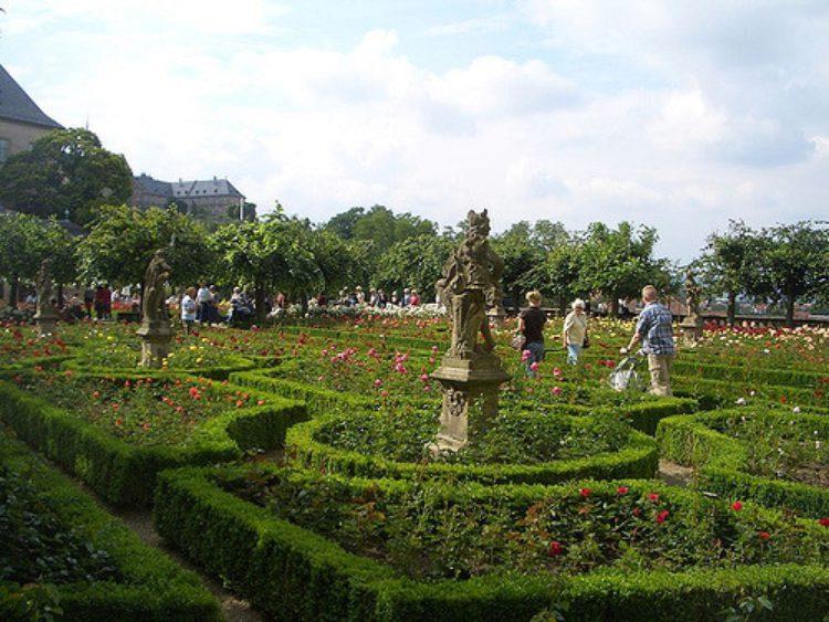 Сад роз в Бамберге