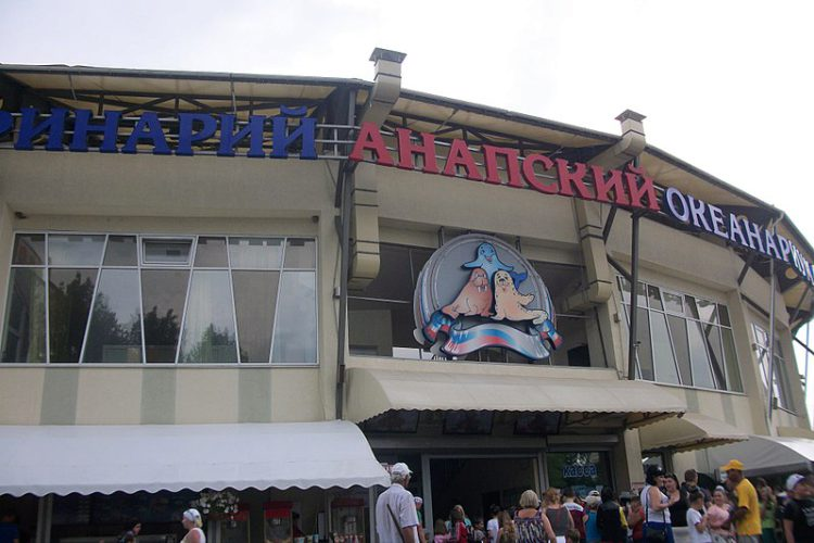 Анапский Океанариум в городе-курорте Анапа