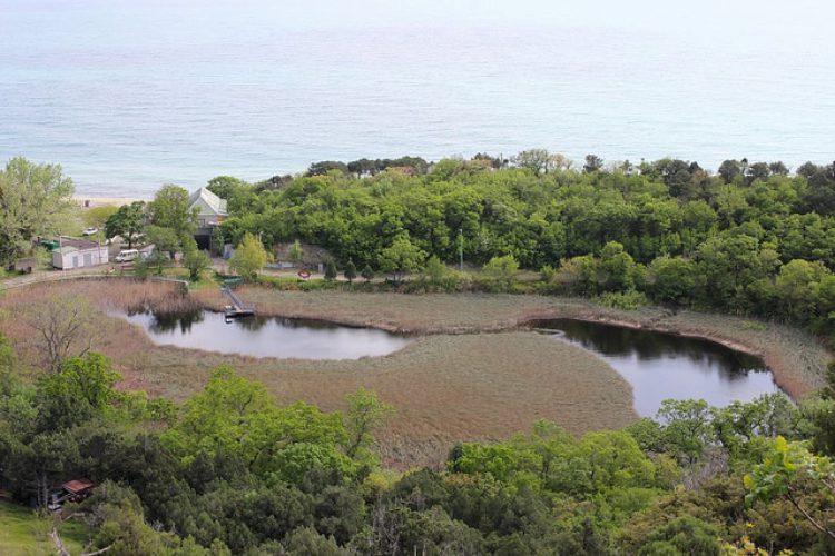 Озеро Сладкий Лиманчик в поселке Абрау-Дюрсо