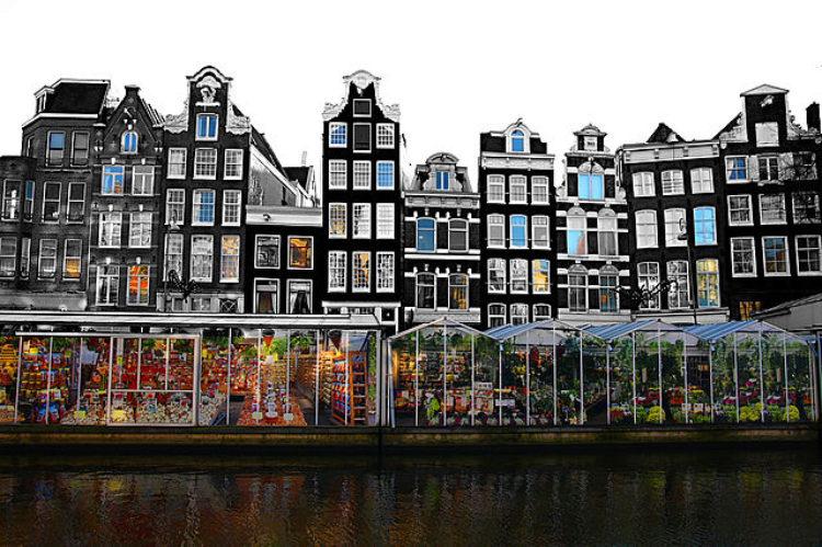 Цветочный рынок Bloemenmarkt (Блоеменмаркет) в Амстердаме, Голландия