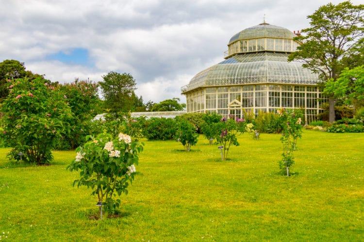 Национальный ботанический сад - достопримечательности Дублина