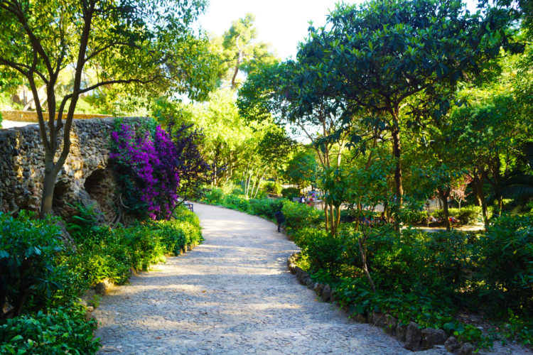Парк Гуэль в Барселоне - достопримечательности Барселоны