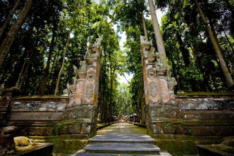 Лес обезьян в Убуде - достопримечательности Бали