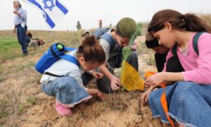 Поездка с детьми в Израиль 2019 (Полезные советы)