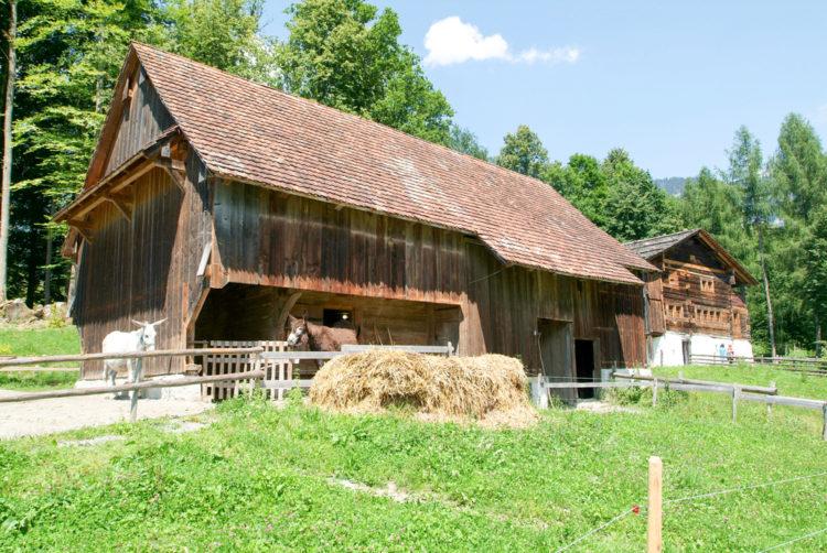 Музей под открытым небом Балленберг - достопримечательности Швейцарии