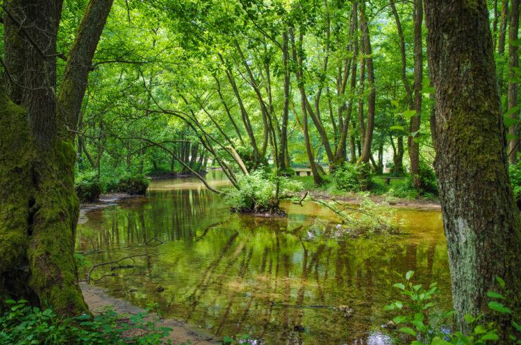 Природный парк Врело-Босне - достопримечательности Боснии и Герцеговины