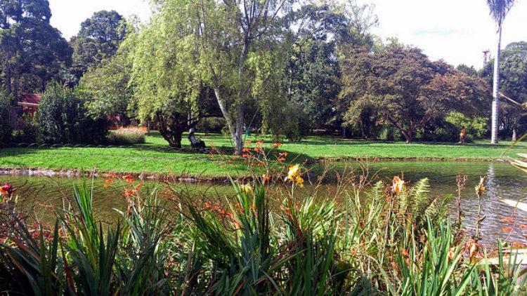 Сад Ботанико Хосе Селестино - достопримечательности Колумбии