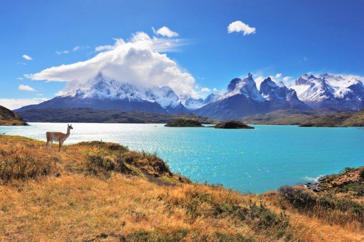 Национальный парк Торрес-дель-Пайне - достопримечательности Чили