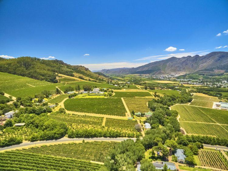 Винные фермы Франшхук - достопримечательности ЮАР