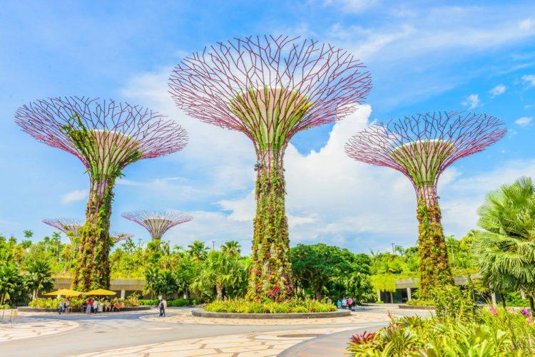 Сады у залива (Gardens by the Bay) - достопримечательности Сингапура