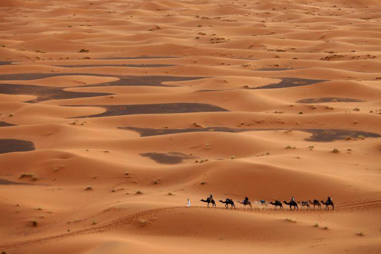 Пустыня Сахара в Тунисе - достопримечательности Туниса