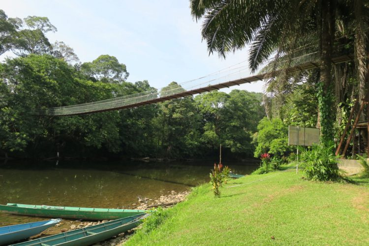 Национальный парк Улу-Тембуронг - что посмотреть в Брунее Бруней Едем в Бруней 9 Ulu Temburong National Park e1522462546665