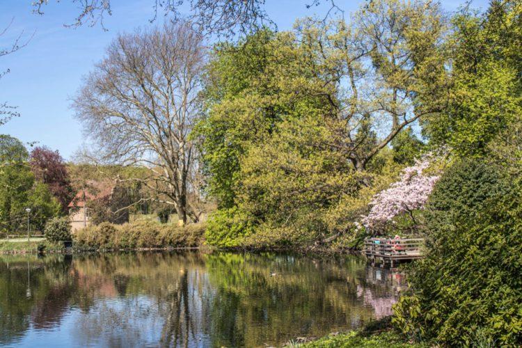 Ромберг-парк - достопримечательности Дортмунда