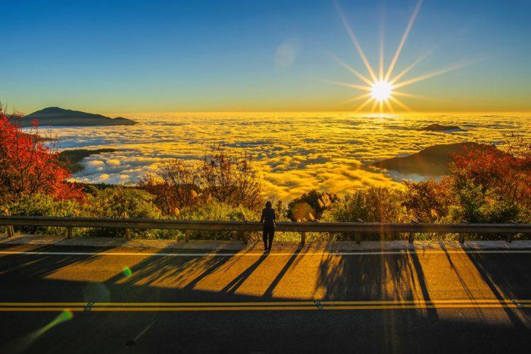 Горы Алишань - достопримечательности Тайваня
