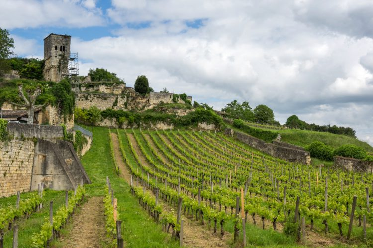 Бордо - винодельческий регион Франции - Что посмотреть в Бордо