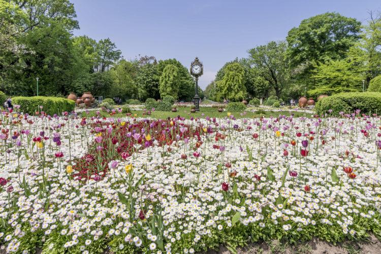 Сады Чишмиджиу - достопримечательности Бухареста