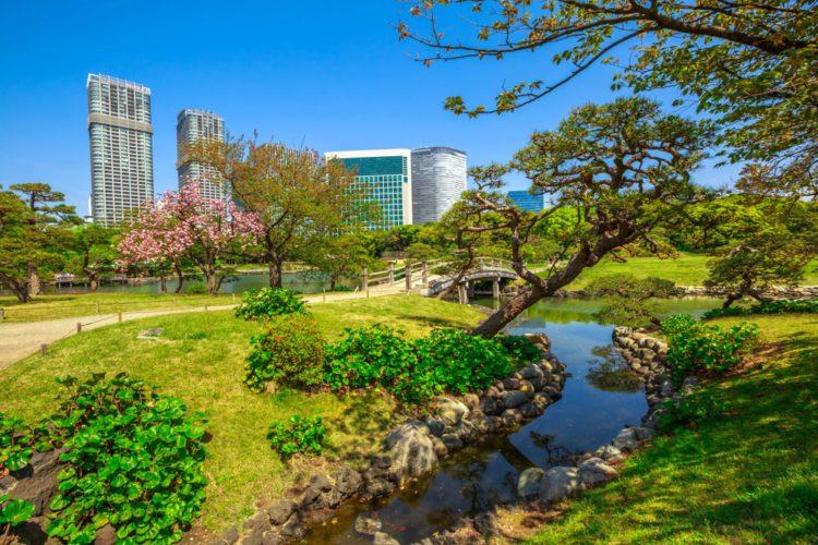 Сады Хамарикю - достопримечательности Токио