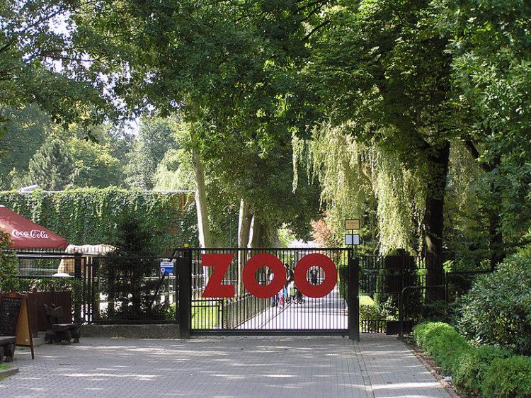 Краковский зоопарк - достопримечательности Кракова