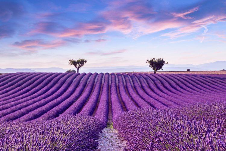Самые красивые места планеты - Прованс, Франция