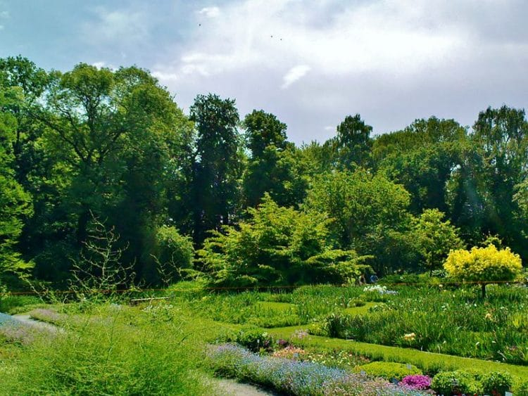 Ботанический сад Ягеллонского университета - Что посмотреть в Кракове