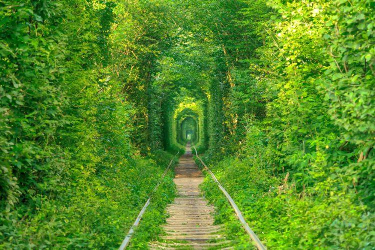 Самые красивые места планеты - тоннель любви, Украина