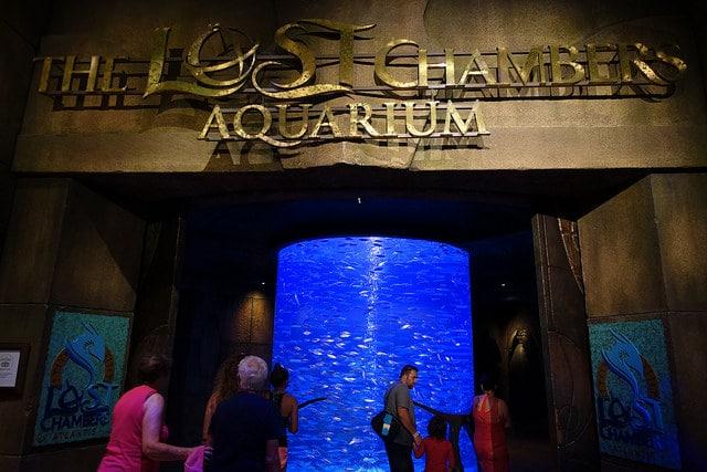 Аквариум «Лост Чамберс» - достопримечательности Дубая