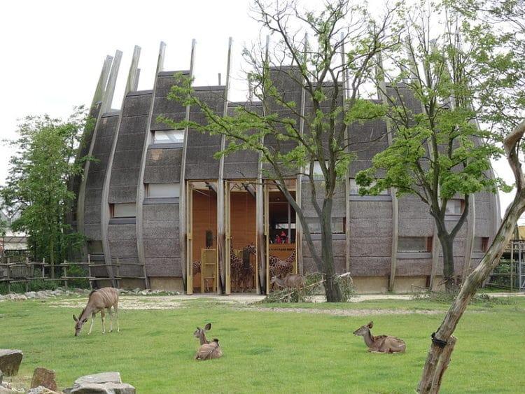 Зоопарк «Diergaarde Blijdorp» - достопримечательности Роттердама