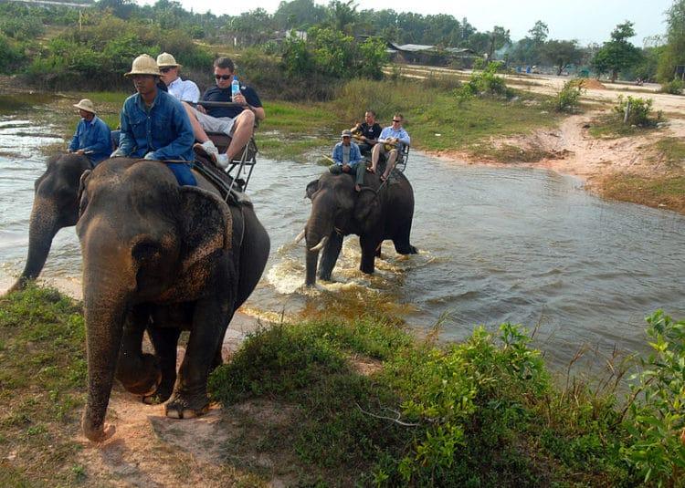 Деревня слонов - достопримечательности Паттайи
