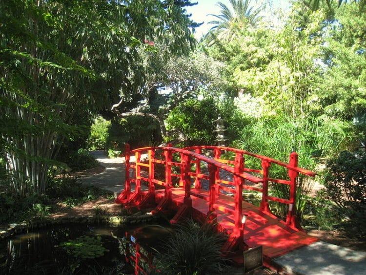 Ботанический сад Майами-Бич - достопримечательности Майами