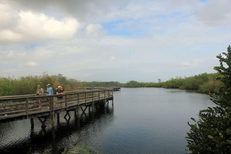Национальный парк Эверглейдс - Что посмотреть в Майами
