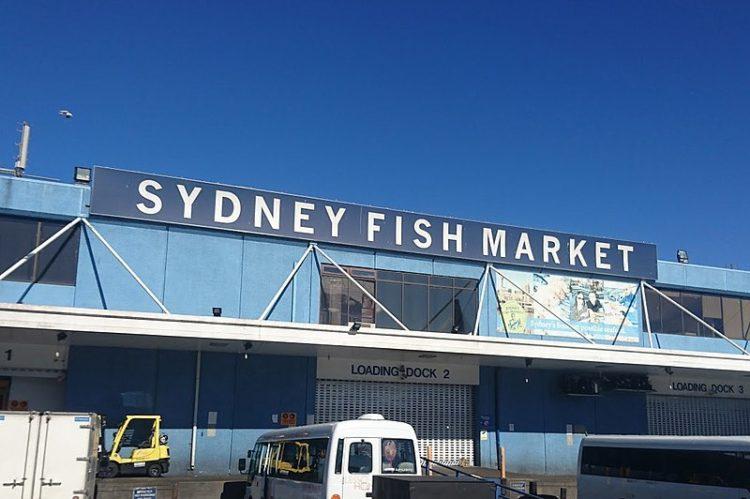 Сиднейский рыбный рынок - достопримечательности Сиднея