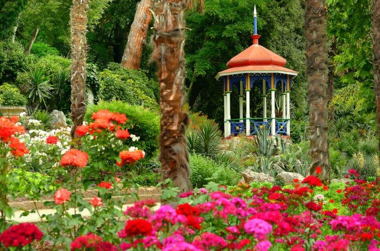 Никитский ботанический сад - достопримечательности Крыма