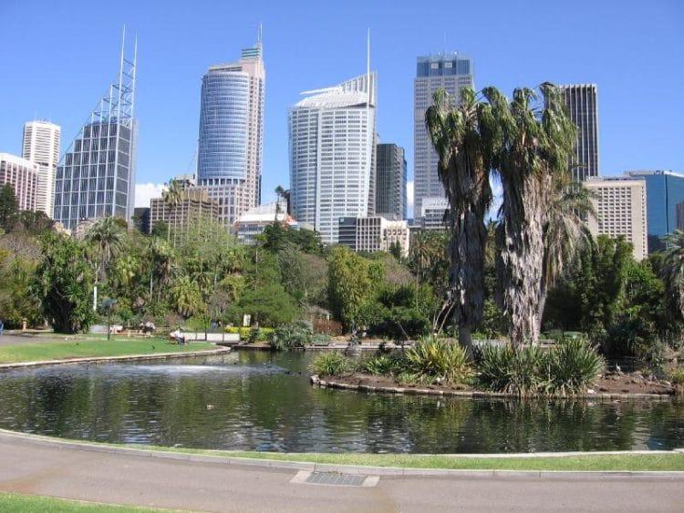 Королевский ботанический сад - достопримечательности Сиднея