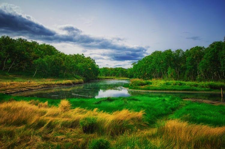 Природные парки Камчатки - Что посмотреть на Камчатке