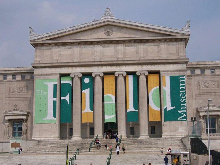 Филдовский музей естественной истории - достопримечательности Чикаго