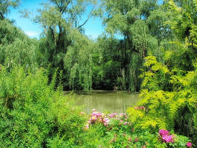 Ботанический сад - достопримечательности Чикаго