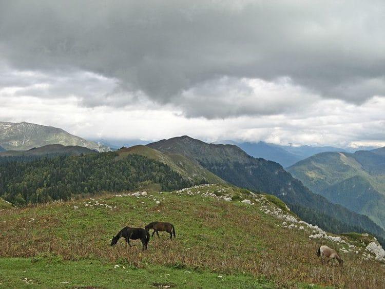 Гора Мамдзышха - достопримечательности Гагры